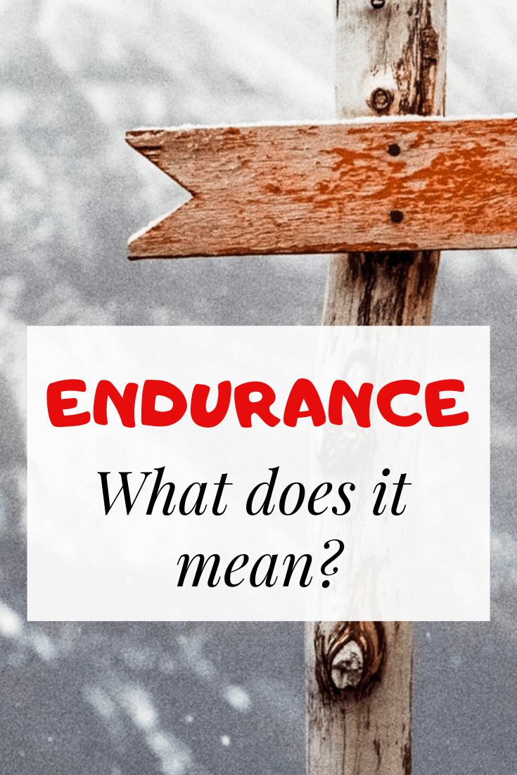 meaning of endurance
