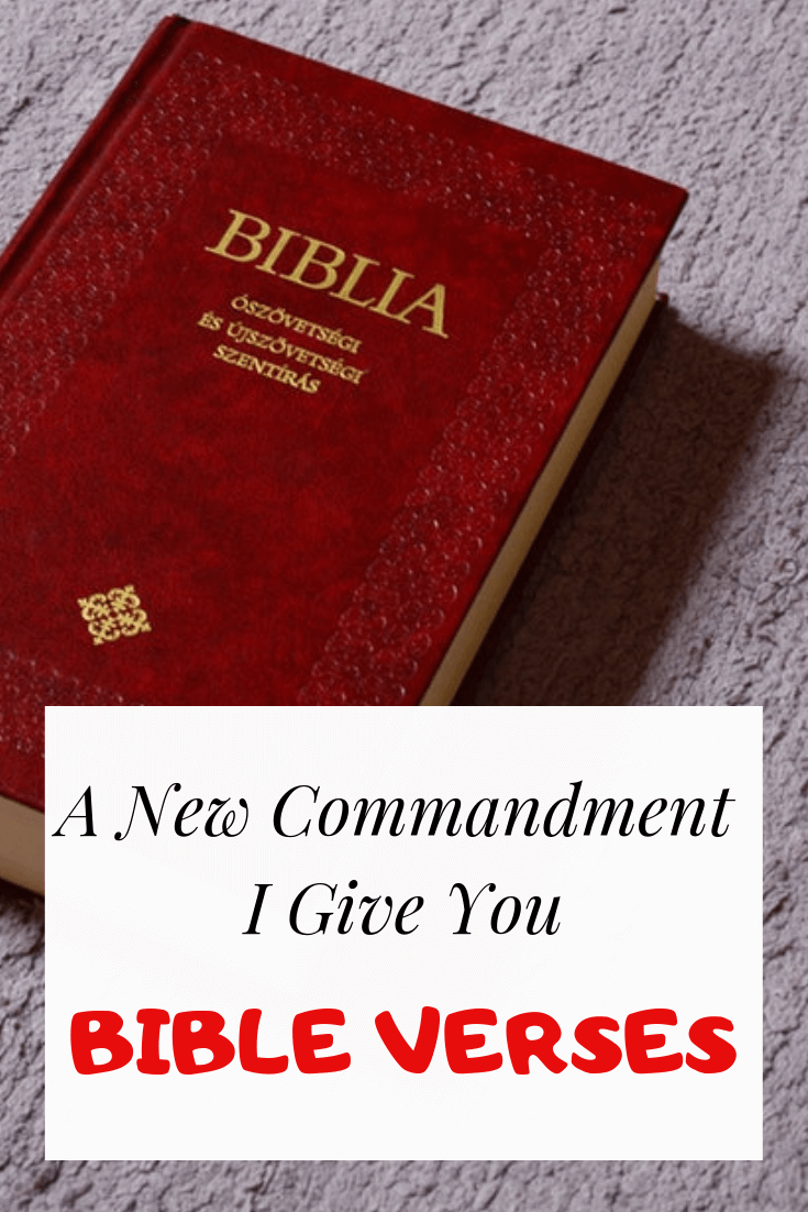 A new commandment I give you bible verses
