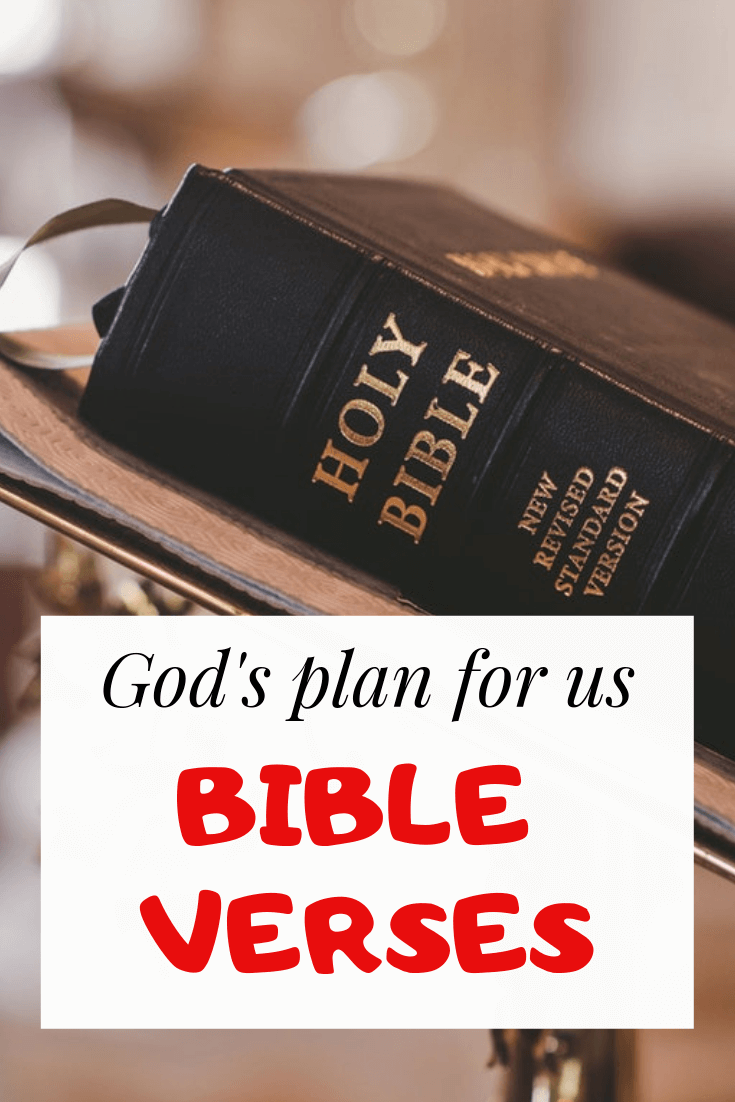 For I know the plans I have for you bible verses