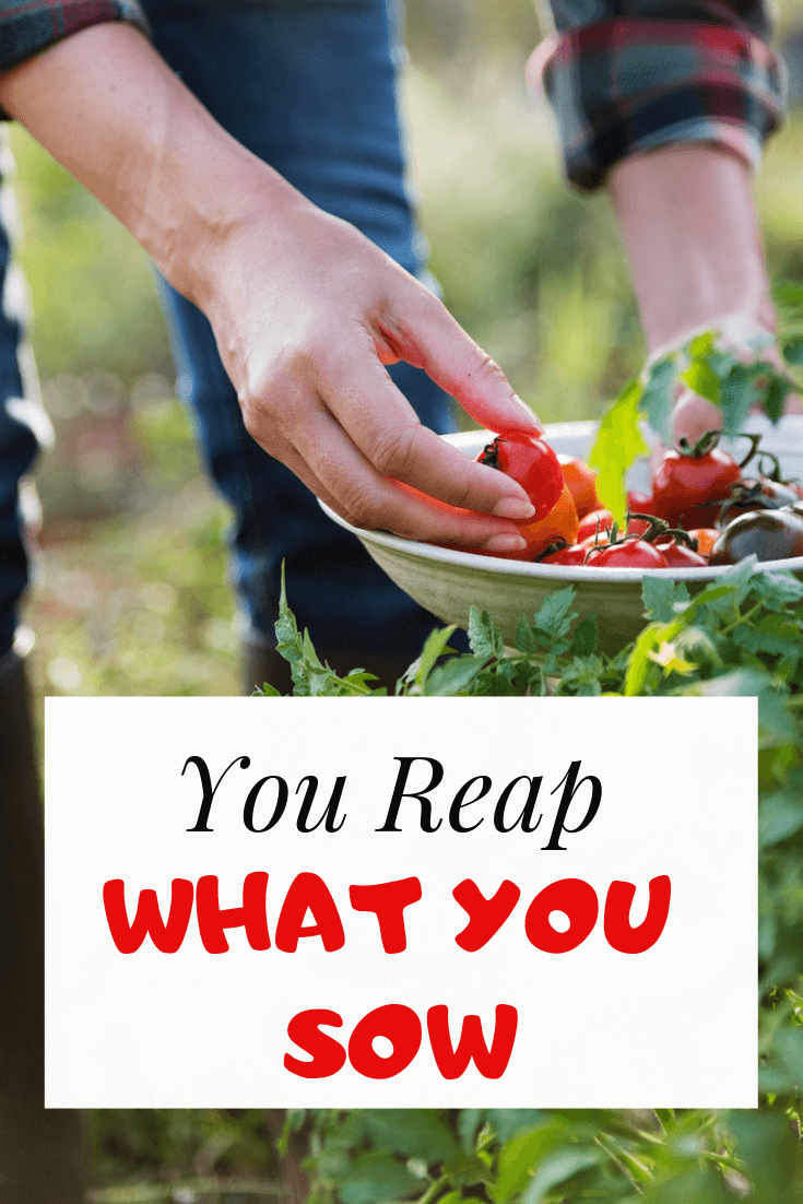 You Reap What You Sow: Meaning and 10 Bible Verses