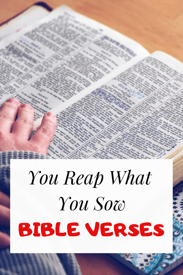 You reap what You sow bible verses