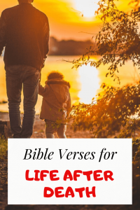 24 Bible verses about life after death: Important Scriptures