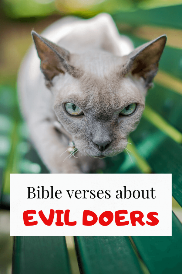 Bible verses about evil doers