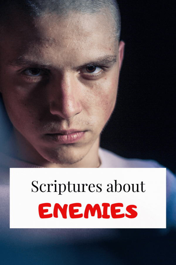 scriptures about enemies